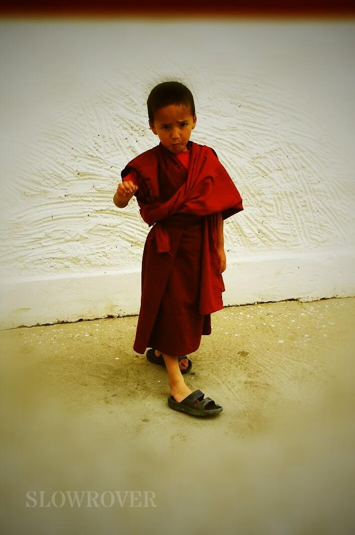 Lama, renunciation
