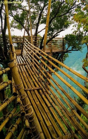 Bamboo Skywalk (Meghalaya)